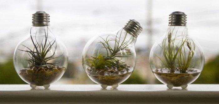 que-hacer-con-las-bombillas-usadas-portadilla
