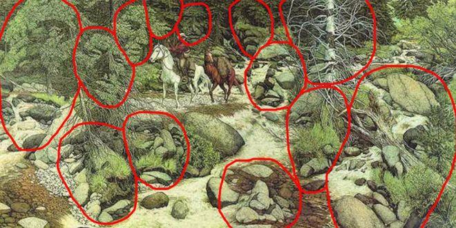solucion al paisaje con 13 caras escondidas