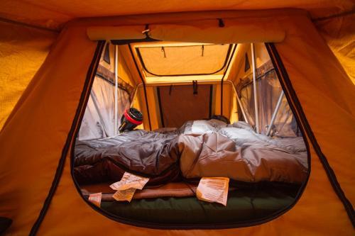 tienda_camping_4