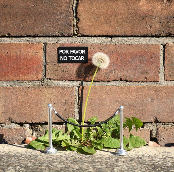 Vandalismo divertido o arte callejero 6 copia