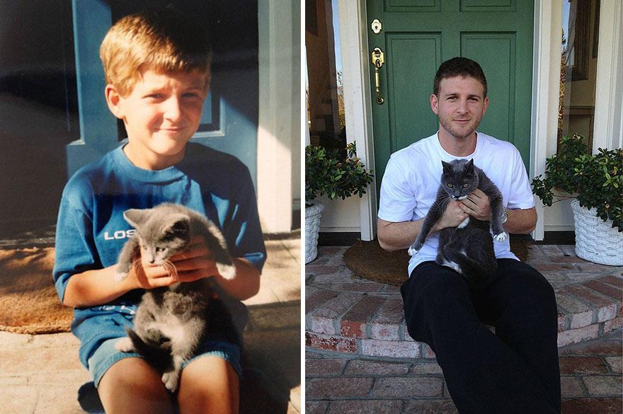 fotografias de gatos cuando eran pequeños y ahora de adultos 6