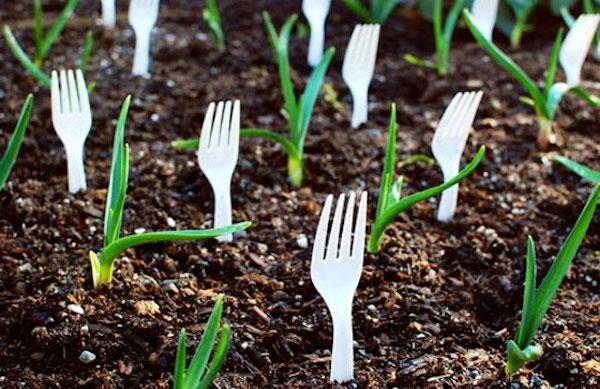 ideas baratas para el jardin 11