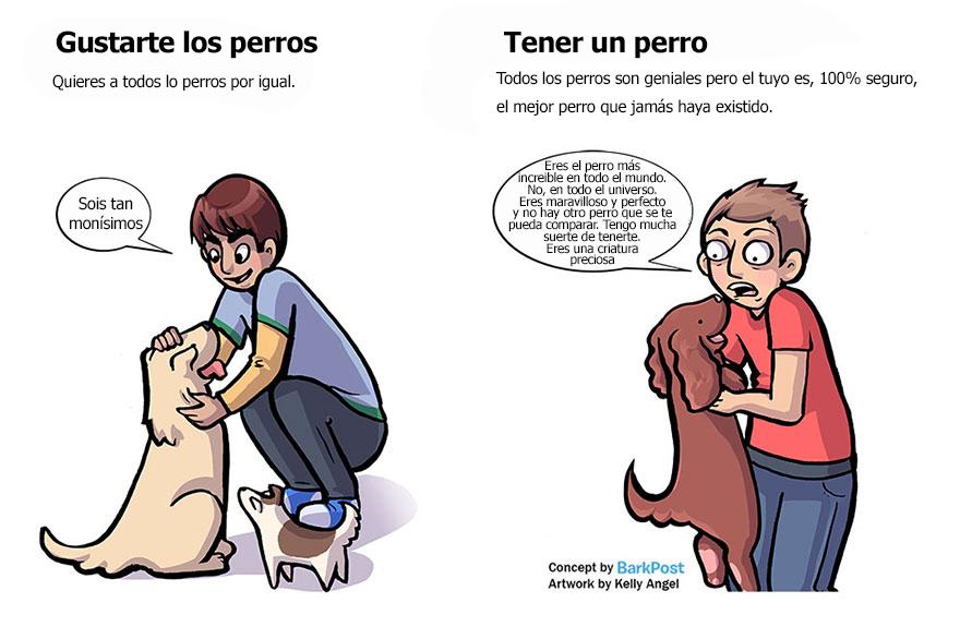 la-diferencia-entre-ser-un-amante-de-los-perros-y-un-padre-perruno-21