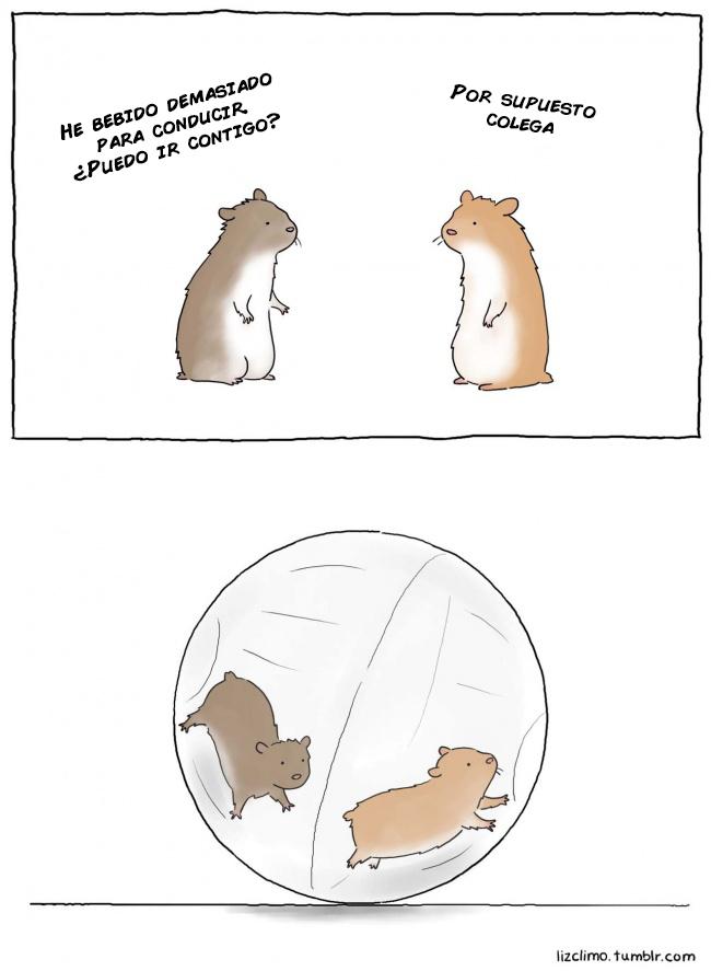 que dirian los animales si pudiesen hablar 16