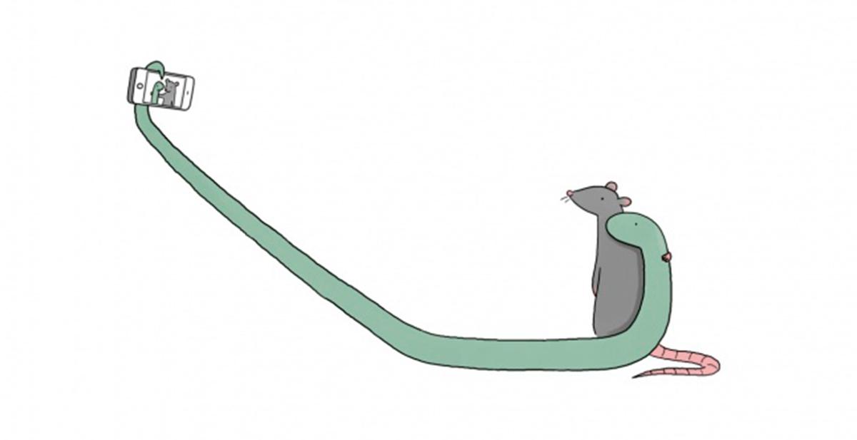 rata y serpiente amigos selfie