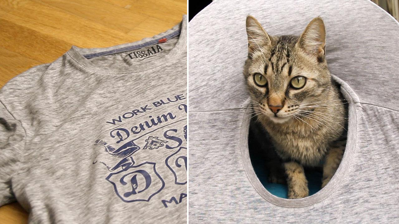tienda-casa-gato