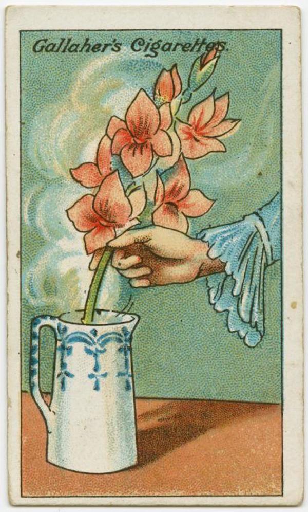 trucos 1900 21