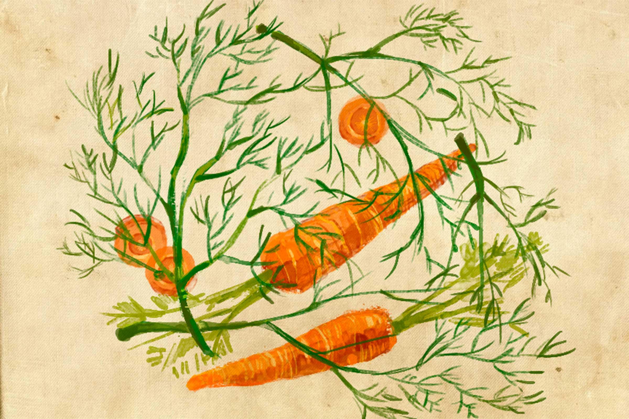 verduras amigas 1