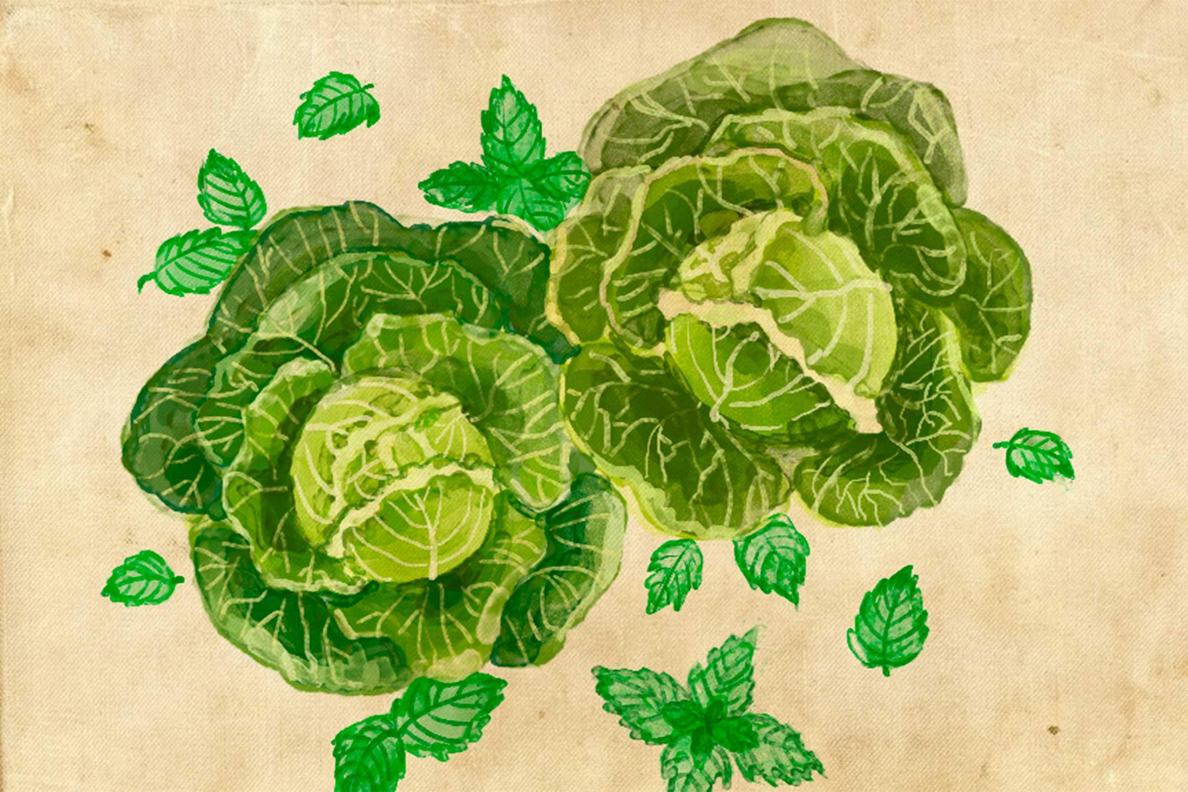 verduras amigas 4