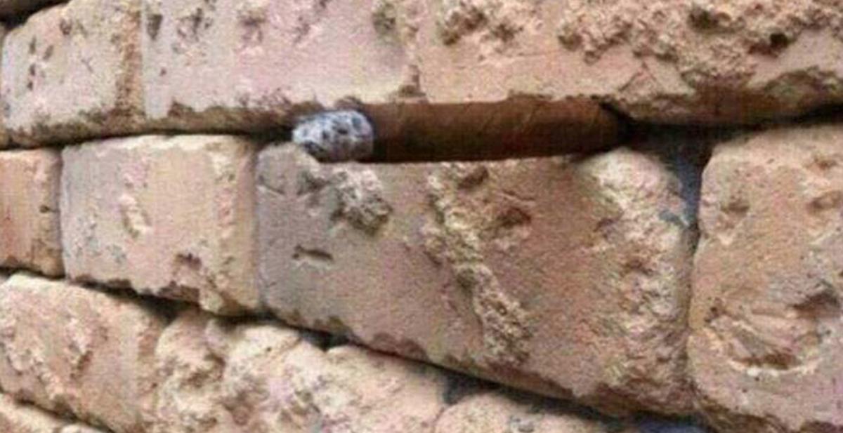 el muro imagen ilusion optica camuflaje