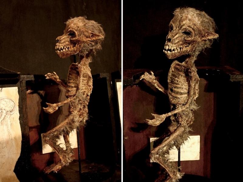 esqueletos sobrenaturales 2