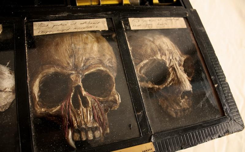 esqueletos sobrenaturales 6