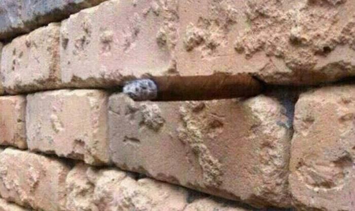 la ilusion optica del muro2