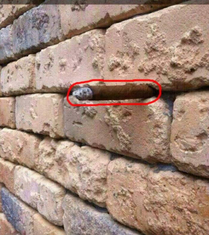 la ilusion optica del muro3