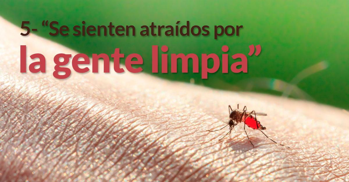 mosquitos-razones-picar1