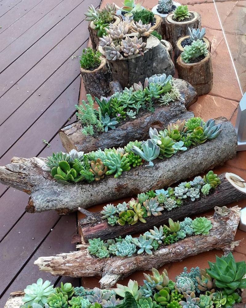 12 alternativas naturales a los maceteros y jardineras de - Maceteros de interior ...