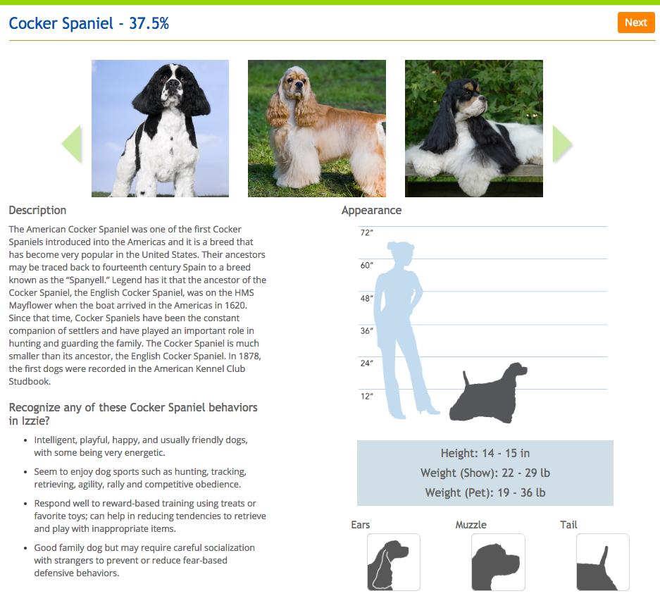 Le hizo un examen de ADN a su perro y descubrio cosas asombrosas 14