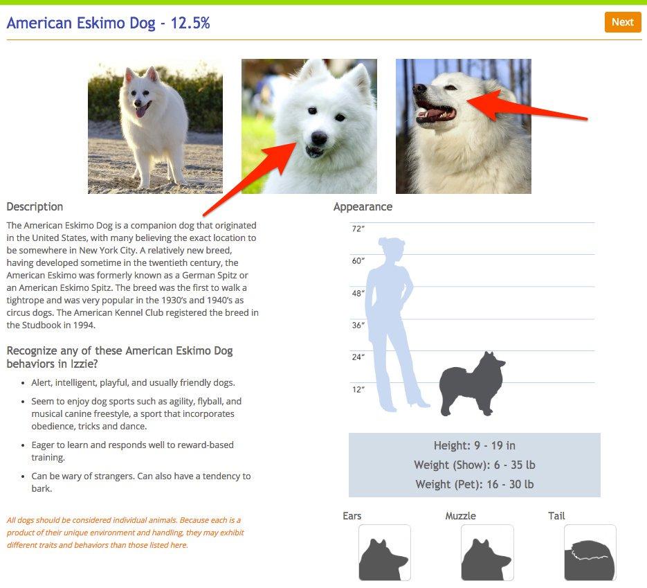 Le hizo un examen de ADN a su perro y descubrio cosas asombrosas 17