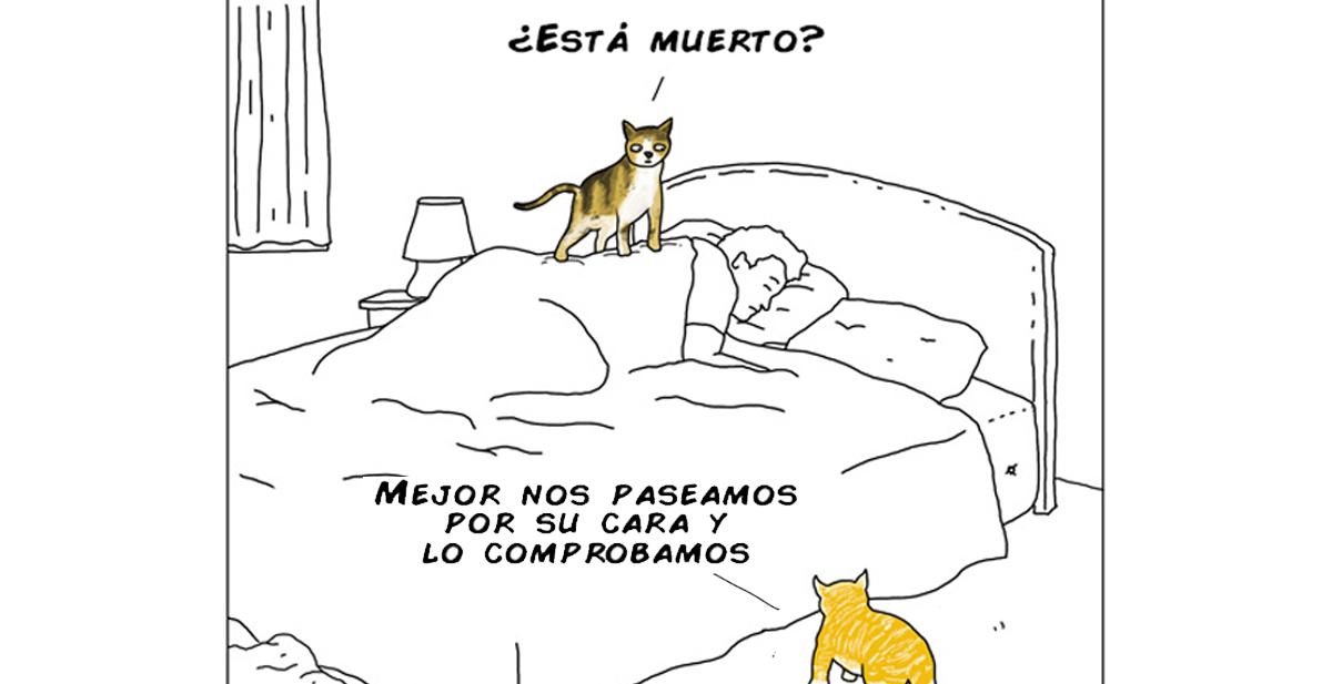 animales-pensamientos