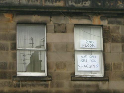 como ser un buen vecino aunque odies a los que viven al lado de tu casa 13