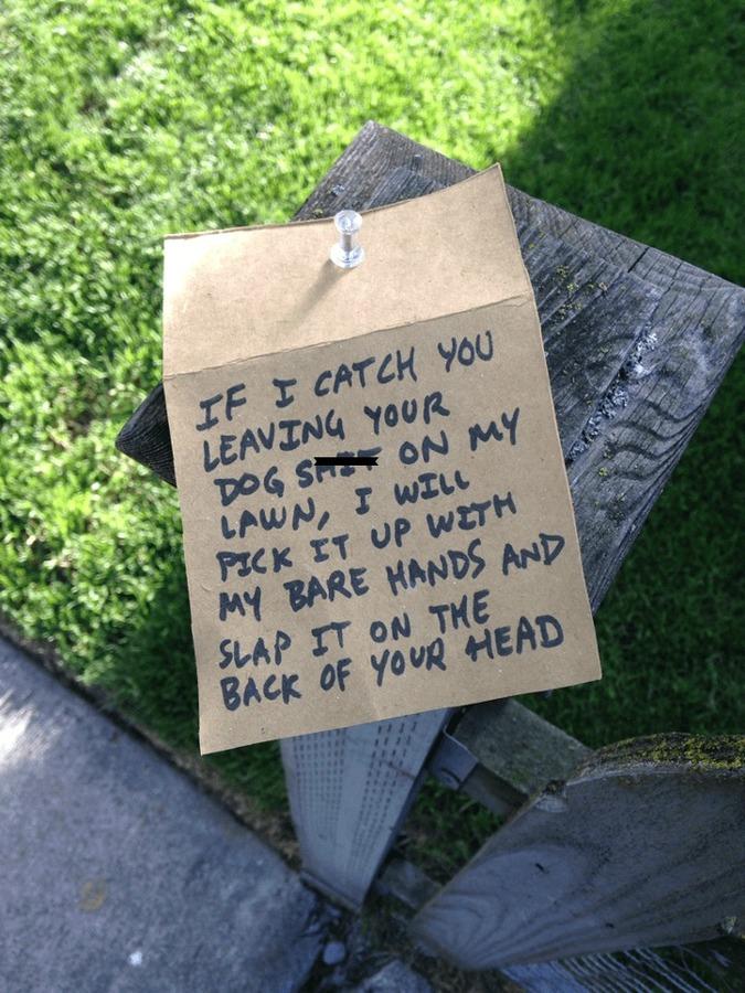 como ser un buen vecino aunque odies a los que viven al lado de tu casa 3