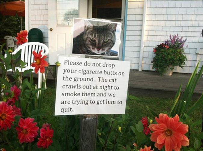 como ser un buen vecino aunque odies a los que viven al lado de tu casa 31