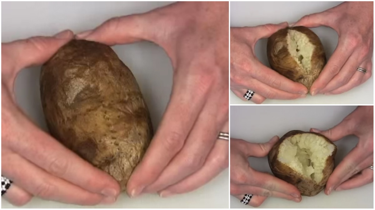 patata 10