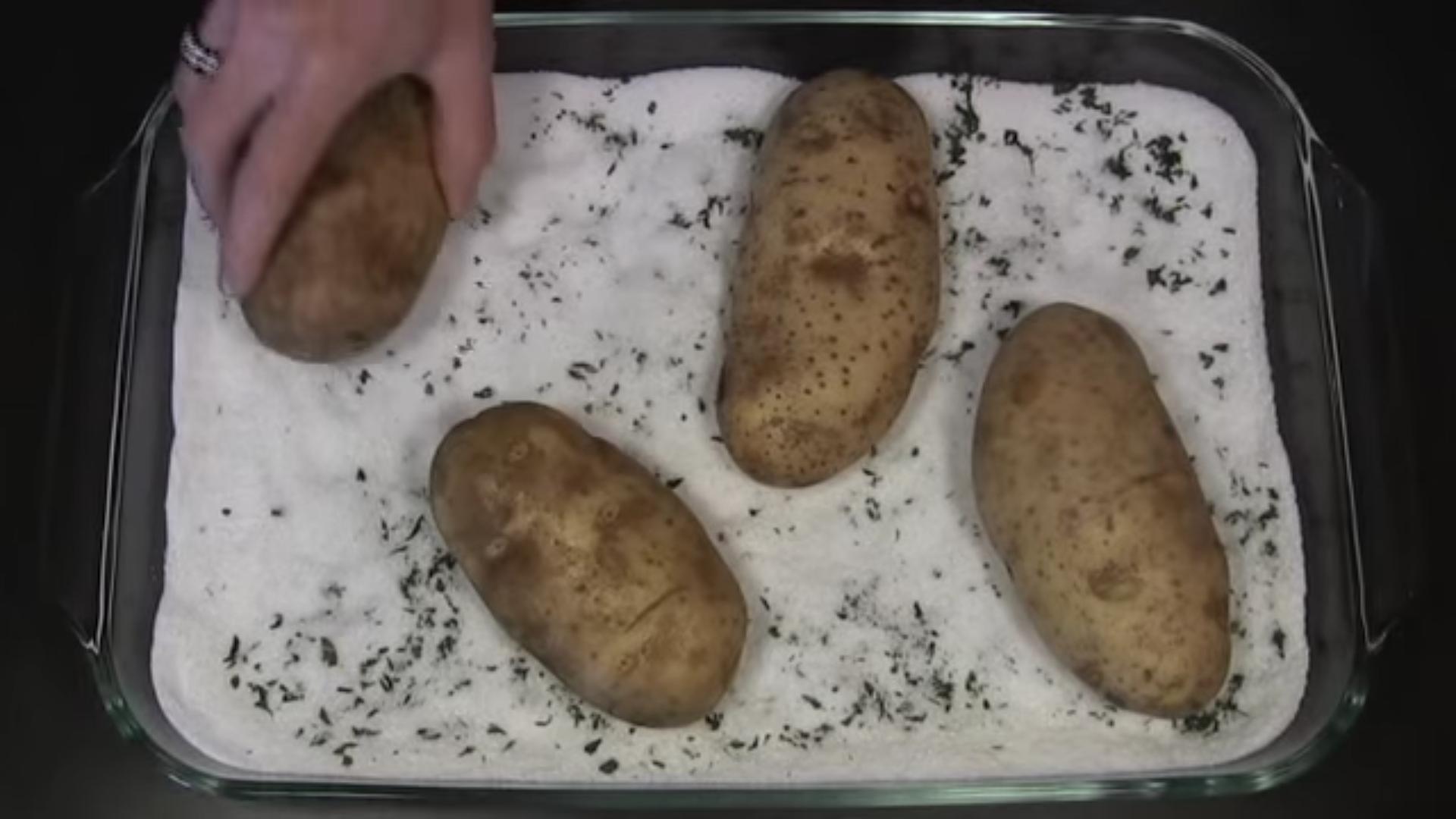 patata 5