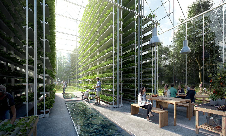 poblado ecologico sustentable 5