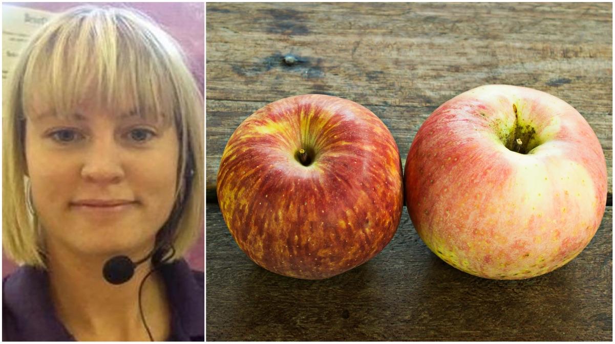 portada manzanas