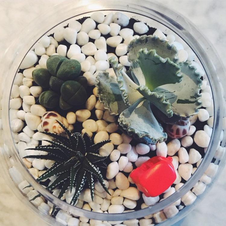 regalos_DIY_12