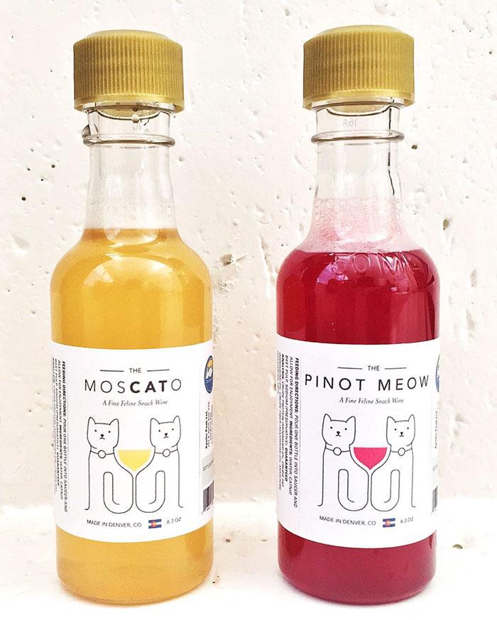 vino_gatos_1
