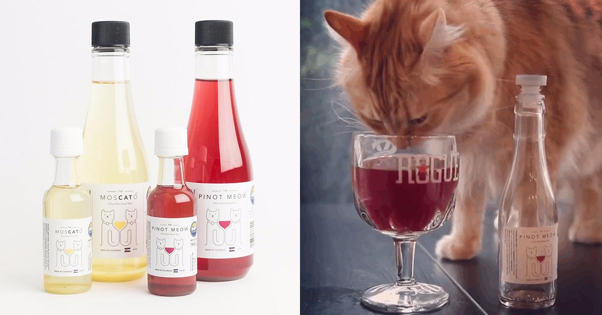 vino_gatos_portada
