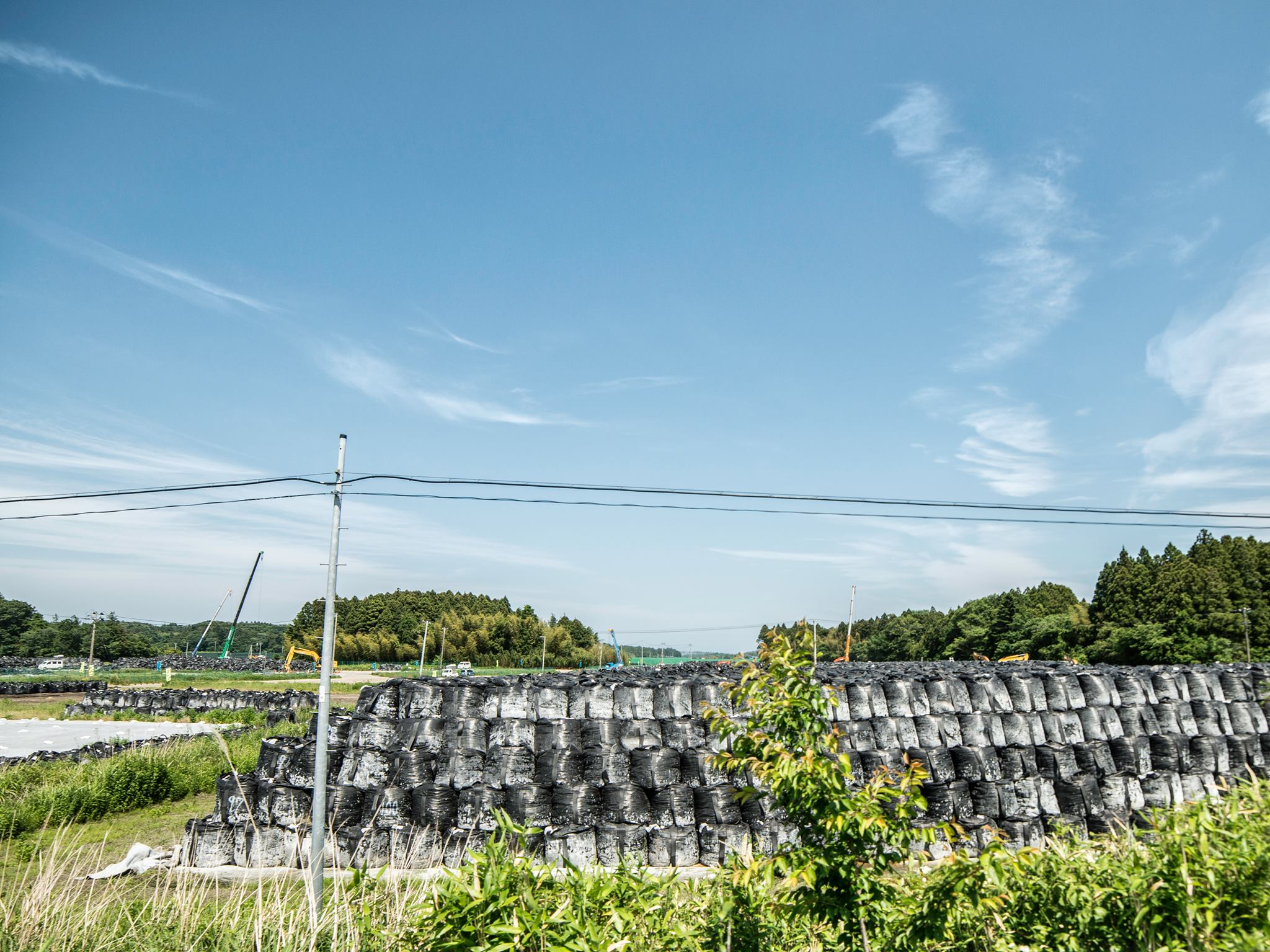 como es fukushima 5 años después del desastre 18
