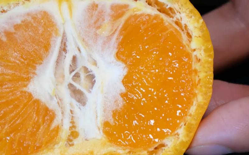 fruta con burbujas 4
