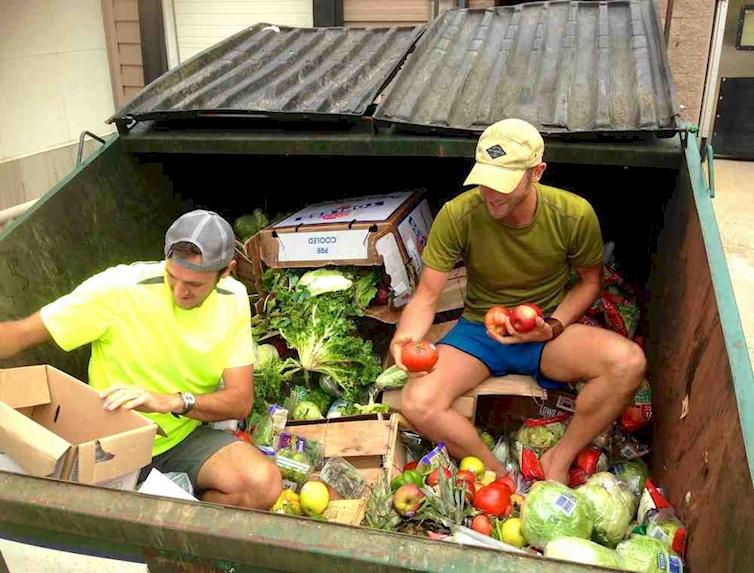 la comida que tiramos a los contenedores 4