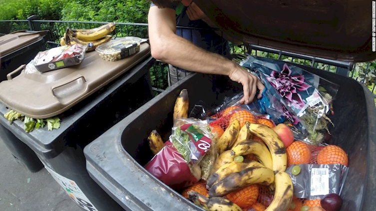 la comida que tiramos a los contenedores 6