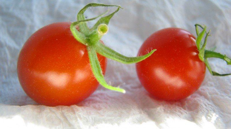 conservar-fruta-verdura5