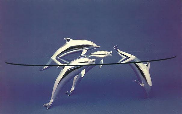 mesa animales en el agua 3