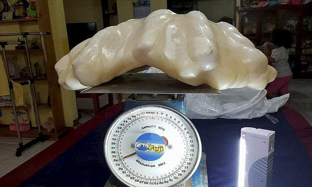 This giant pearl could be the biggest ever found in the world - after being handed in by a FISHERMAN. See SWNS story SWPEARL; The man, who has not been identified, found the priceless 34kg gem ten years ago in sea off the coast of Palawan Island, Philippines. He didn't know the potential eye-watering value and kept it as a 'good luck charm' in his rundown wooden home. But a fire at the property earlier this year forced him to have a clear out and move house.