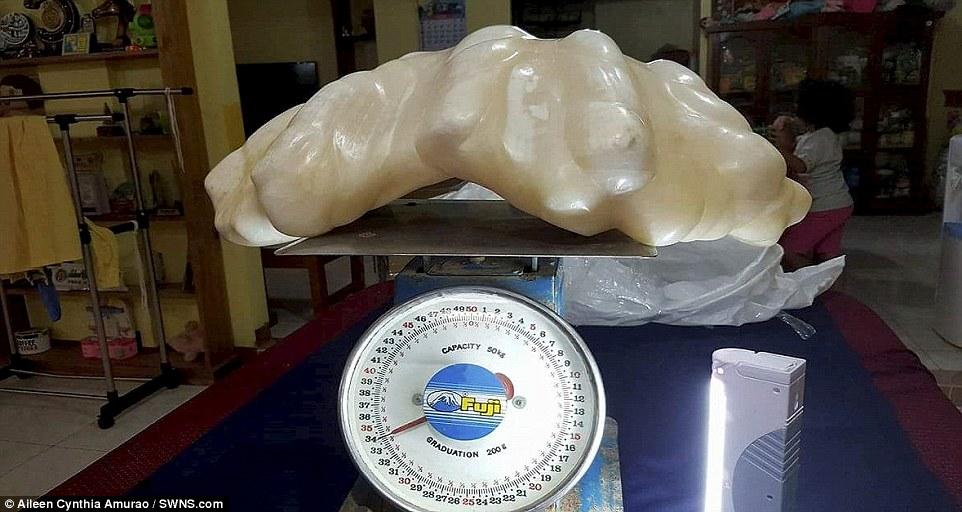 perla-gigante2