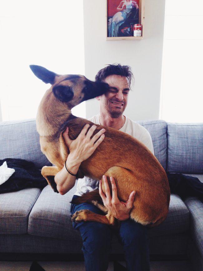 perros-rescatados-felices14