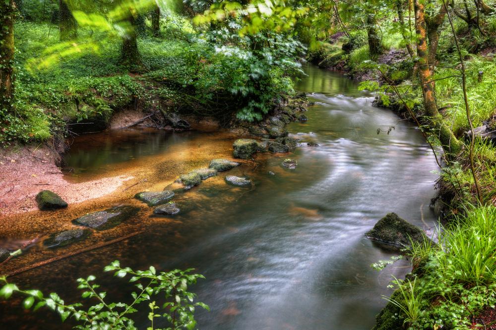 La roca de 137 toneladas que cualquiera puede mover y otras curiosidades del bosque de Huelgoat Huelgoat-foto-2