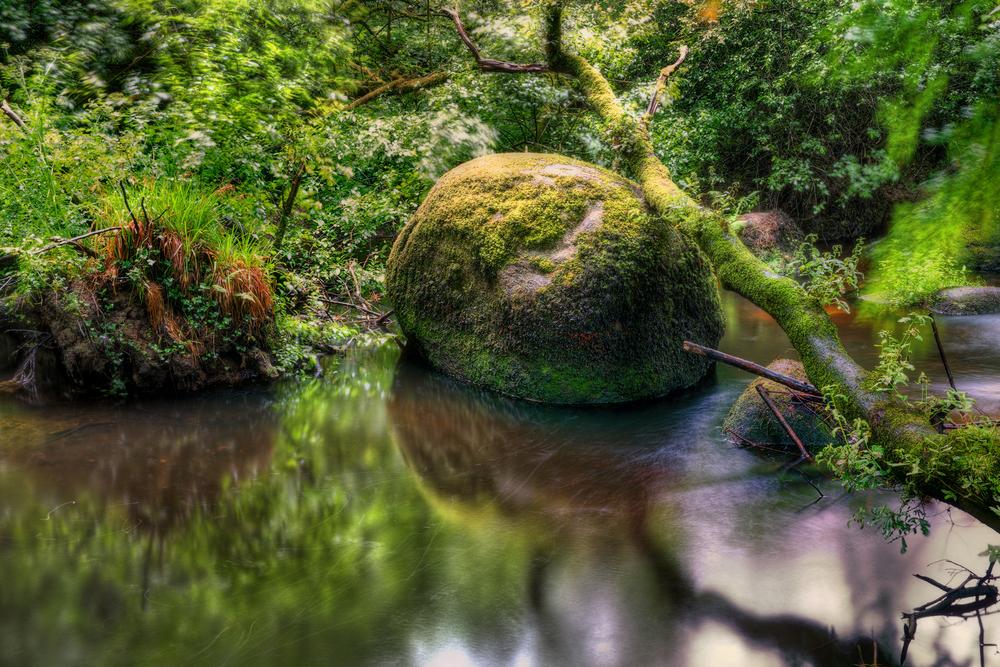 La roca de 137 toneladas que cualquiera puede mover y otras curiosidades del bosque de Huelgoat Huelgoat-foto-3