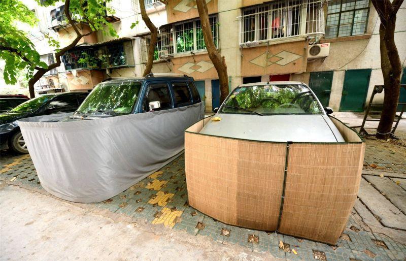 coches chinos anti ratas 5