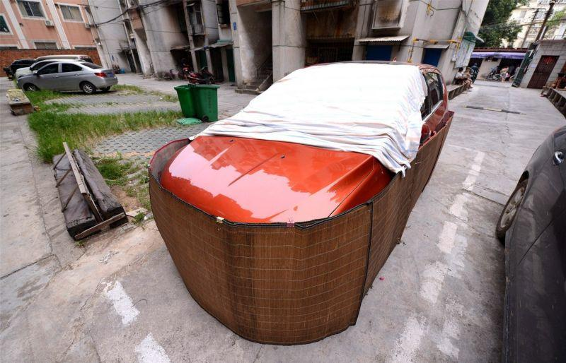 coches chinos anti ratas 6