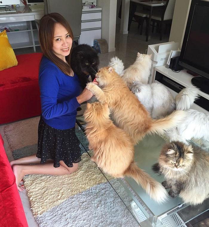 la mujer de los 12 gatos en japon 16