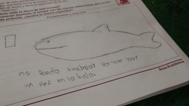 las respuestas mas graciosas de ninos en examenes 13