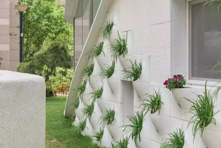 pared_flores_8