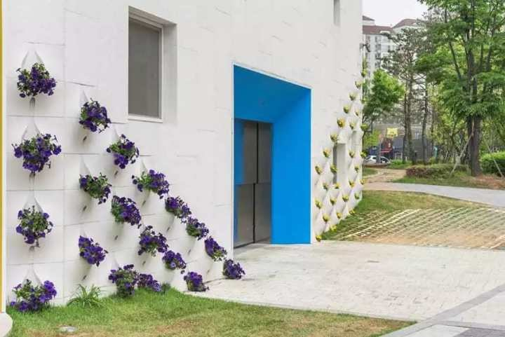 pared_flores_9